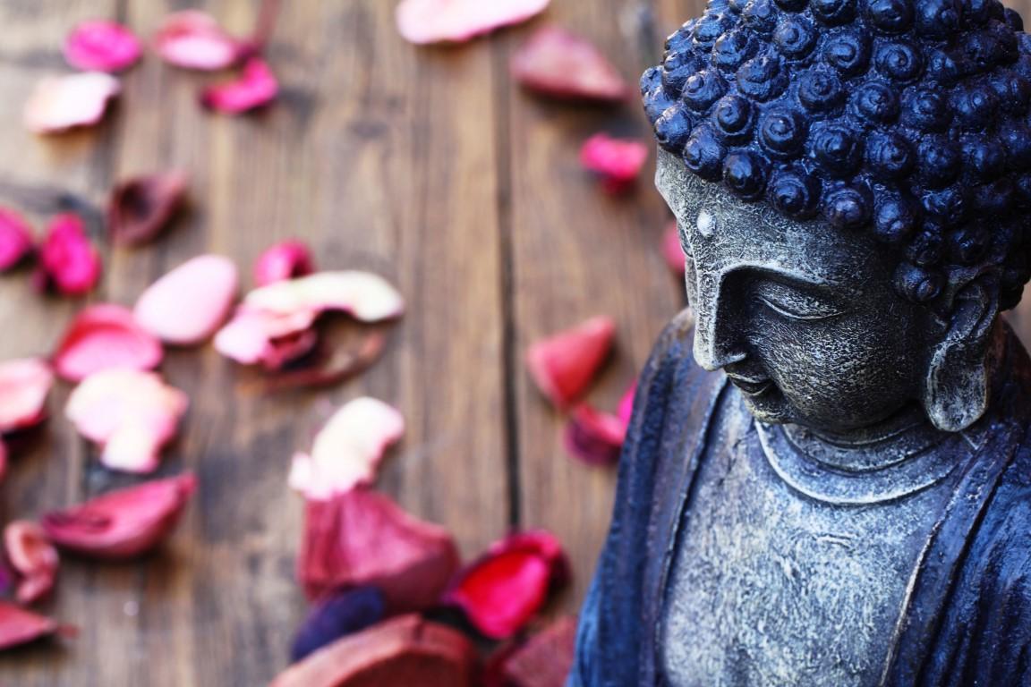 Hatha Yoga und Meditation